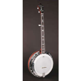 RICHWOOD - Bluegrass banjo 5 cordes