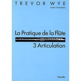 Trevor wye pratique de la flute 3 articulation